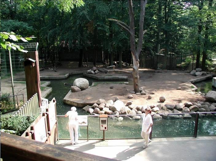 tiere im zoo eberswalde pr sentiert vom f rderverein des zoologischen garten eberswalde e v. Black Bedroom Furniture Sets. Home Design Ideas